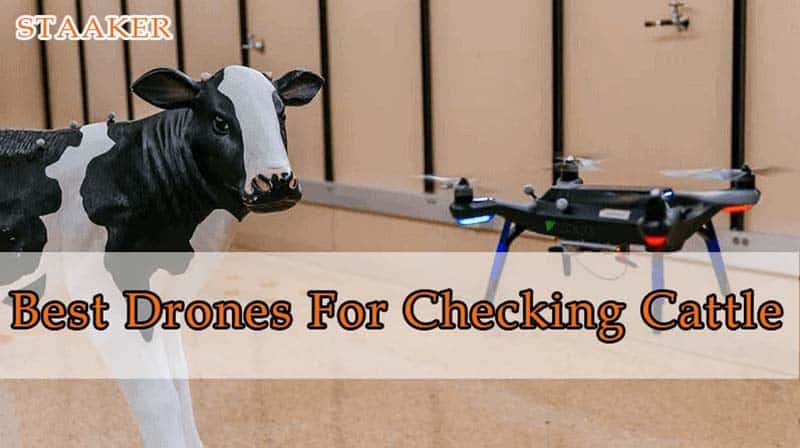 Best Drones For Checking Cattle 2021