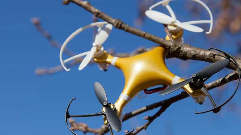 How To Get A Drone Out Of A Tree 2021