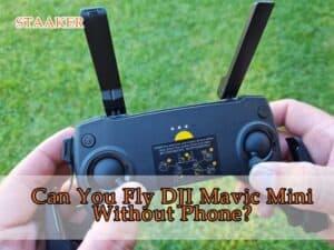 Can You Fly DJI Mavic Mini Without Phone