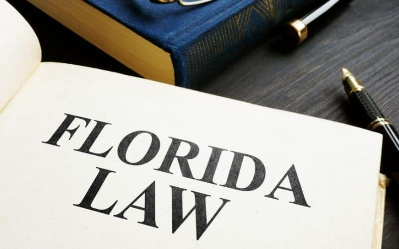 Florida State Drone Laws